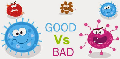 Why-Some-Germs-Are-Good-For-You