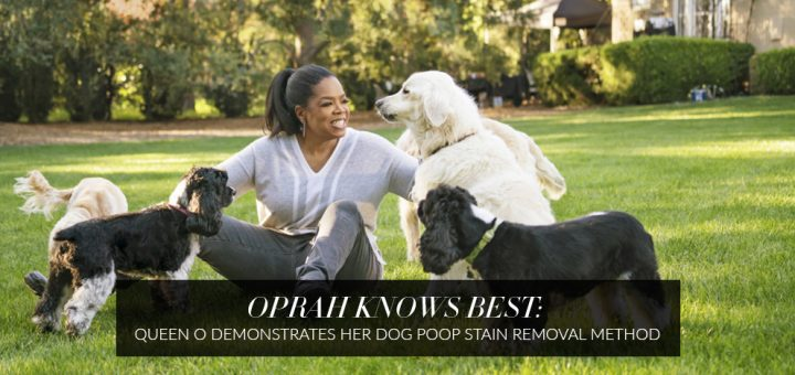 Oprah_cleans_dog_poop
